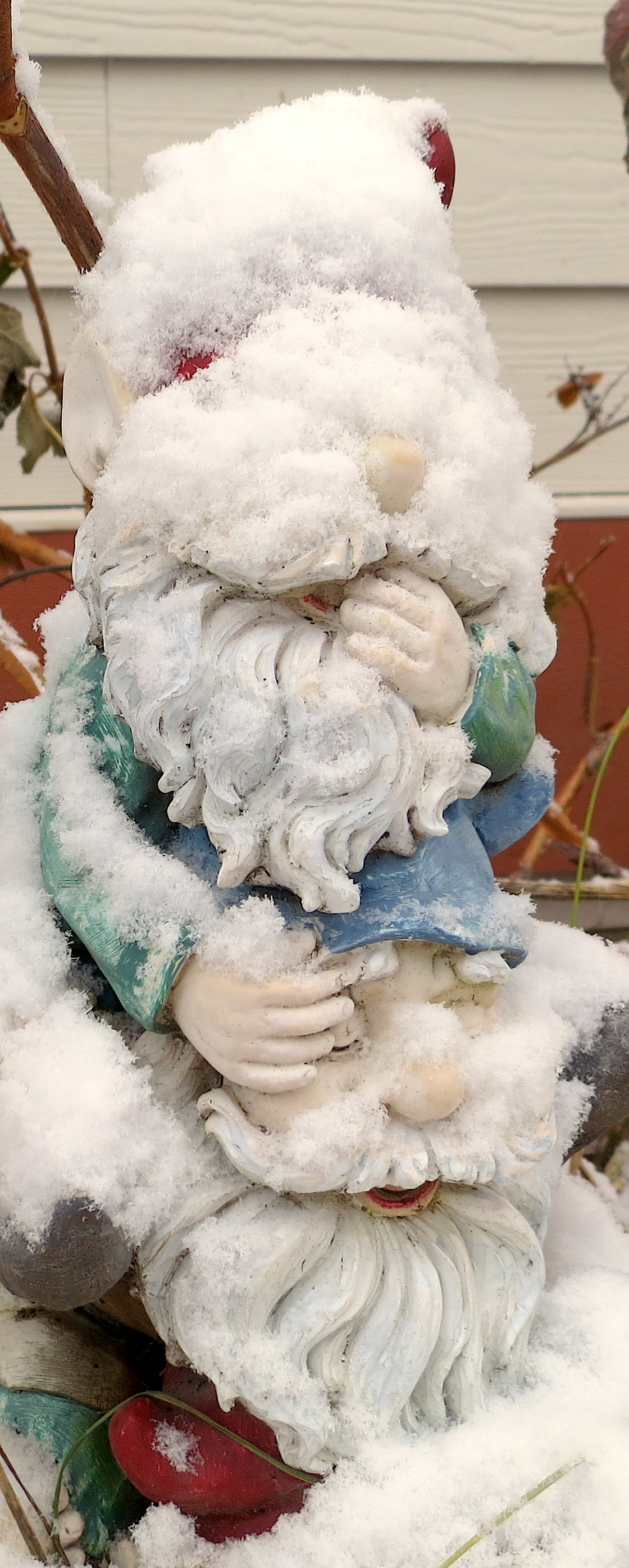 snow1220135