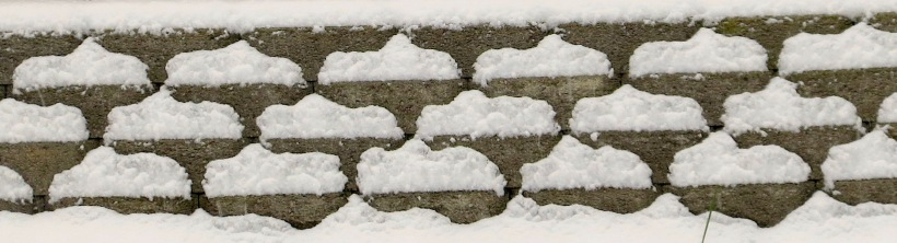 snow12209