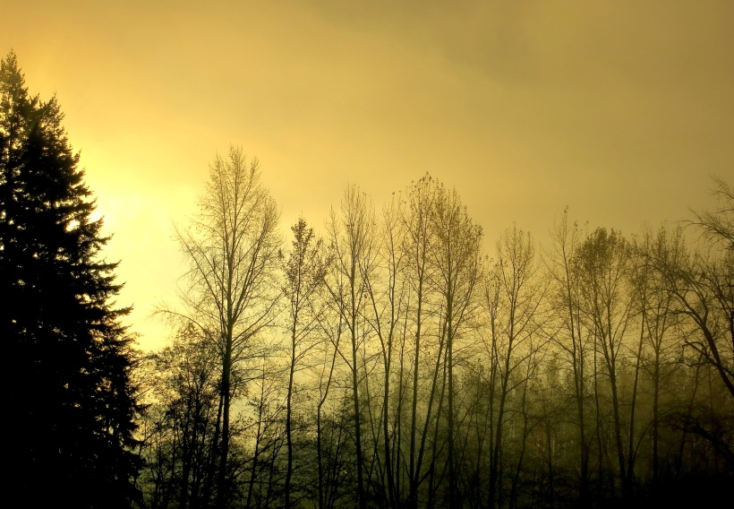 sunrise1131