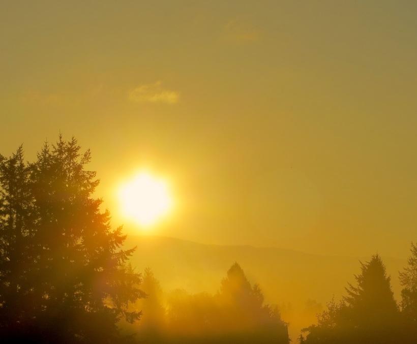 sunrise9133