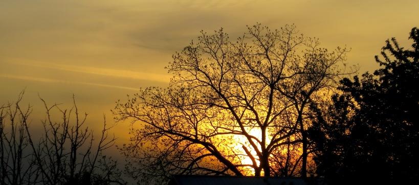 sunset429141