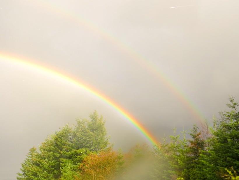 rainbow3273