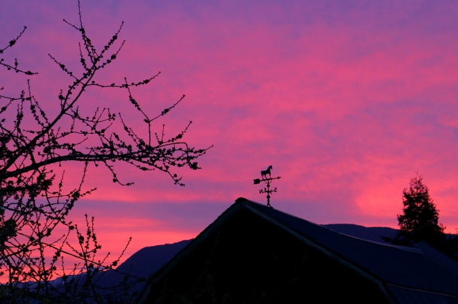 sunrise410143