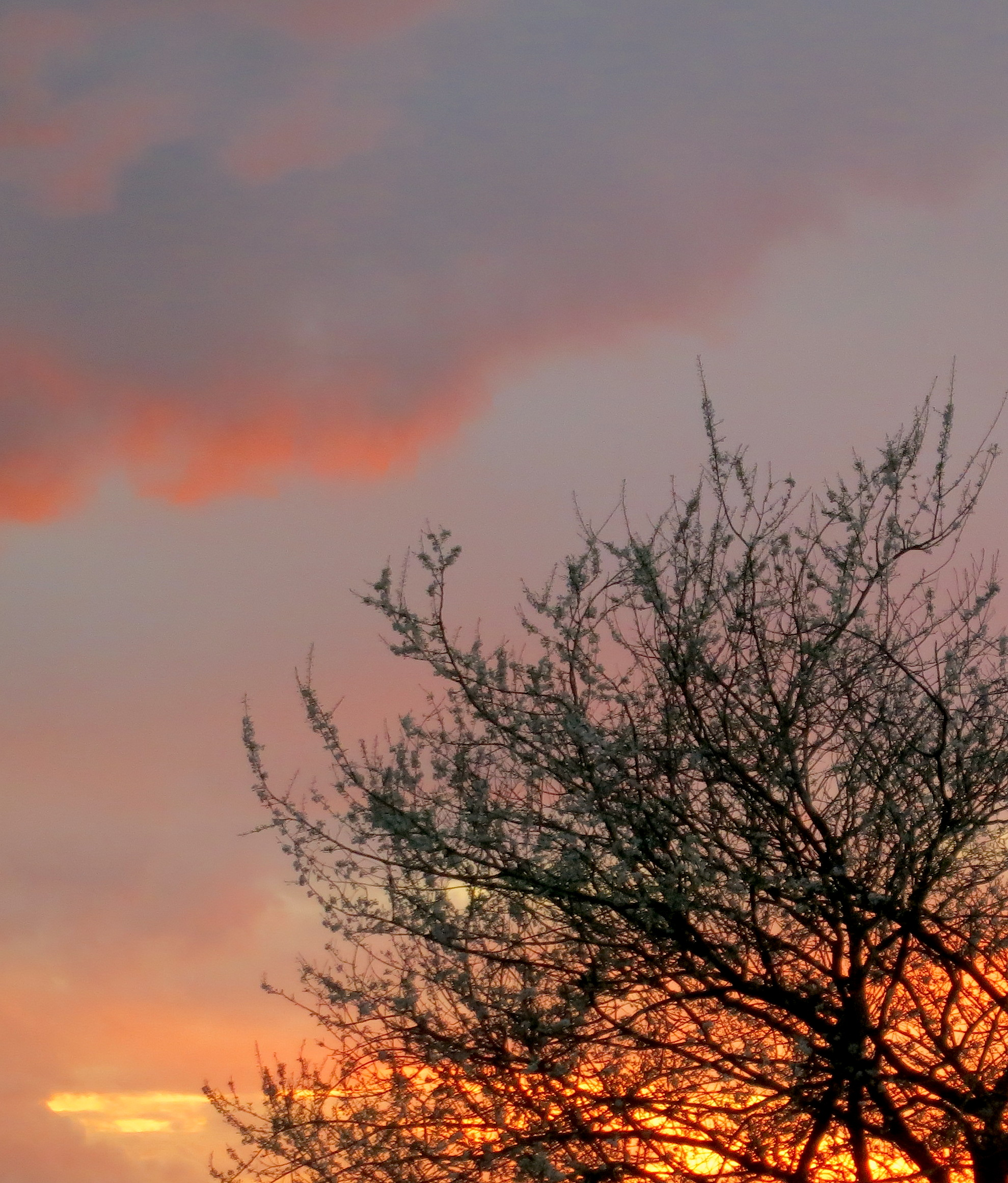 sunset319145