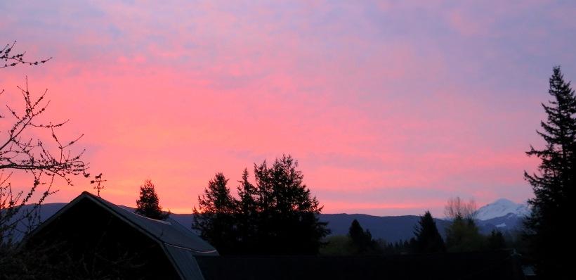 sunrise410141