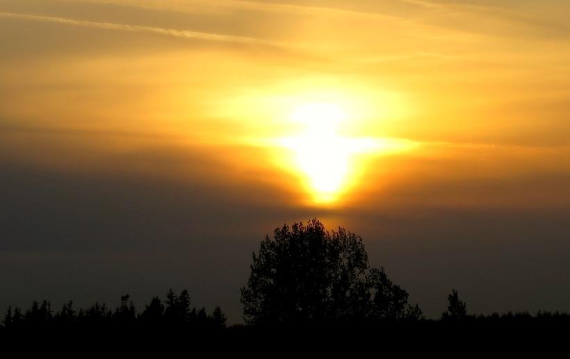 sunset429142