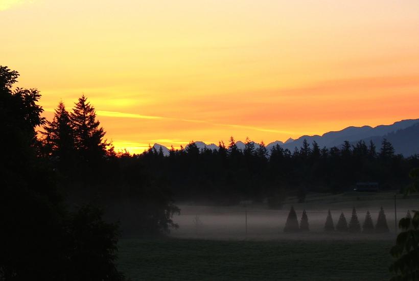 sunrise530142