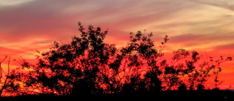 sunset430143