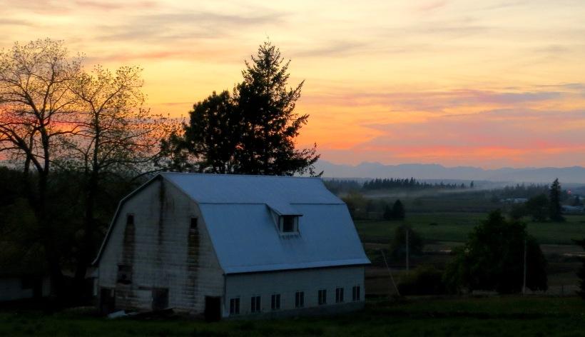 sunset5114