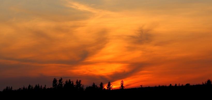 sunset513143