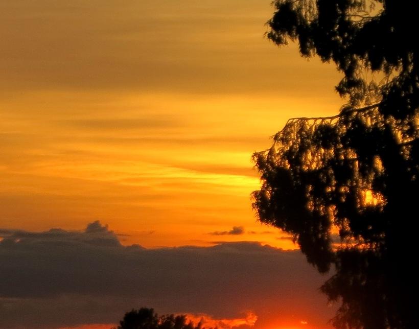 sunset520141