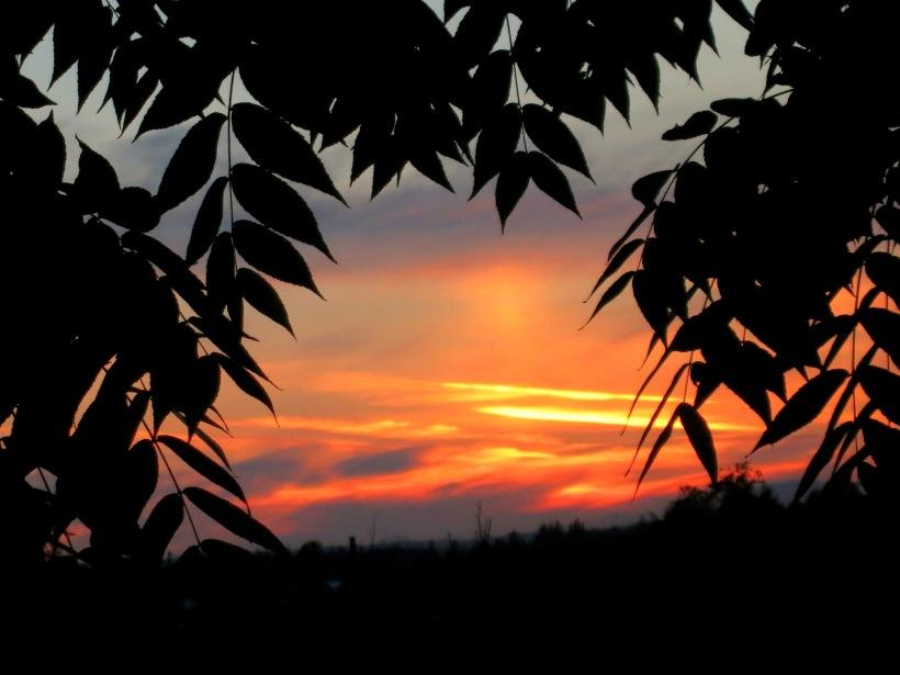 sunset621146