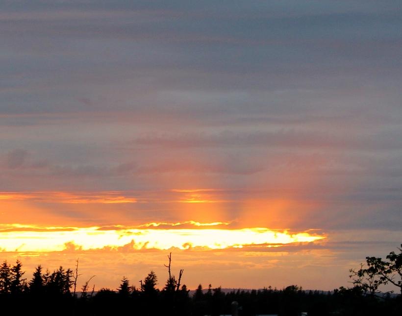 sunset68145