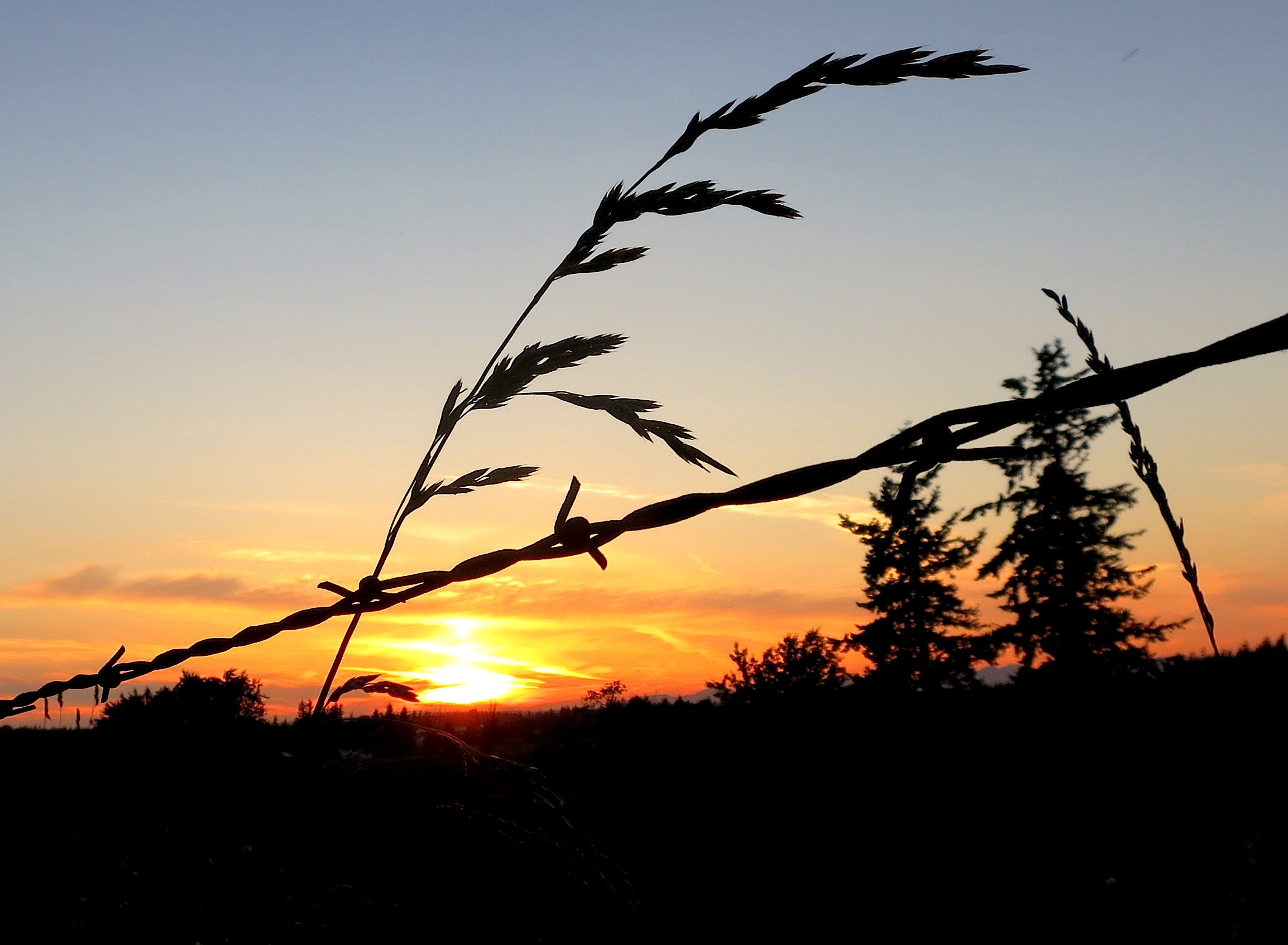 sunset62114