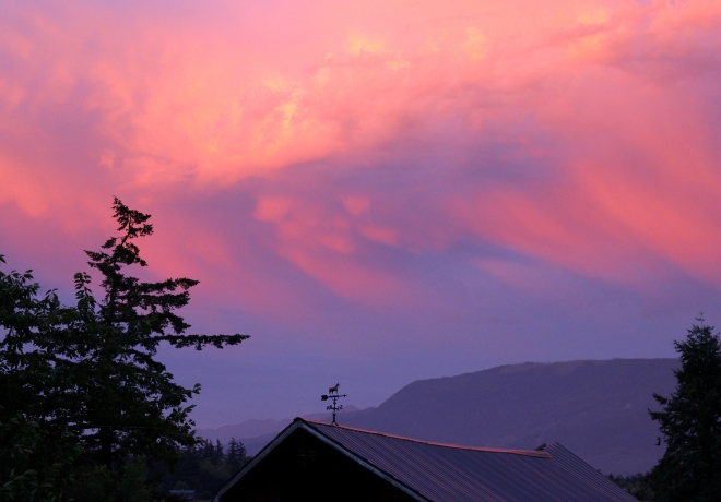 sunset713144
