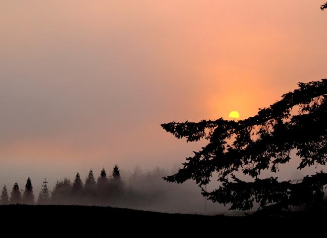 sunrise82414