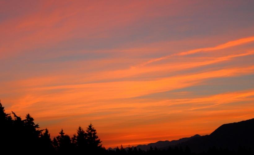 sunrise89141