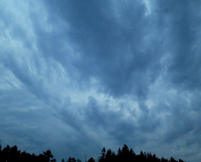 cloudy9172