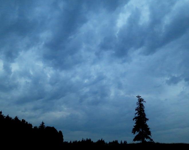 cloudy9173