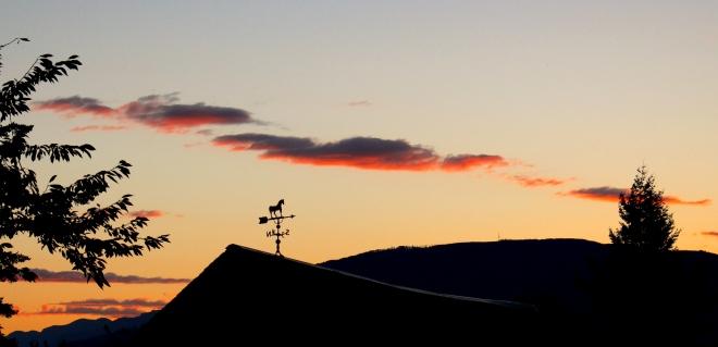 sunrise910141