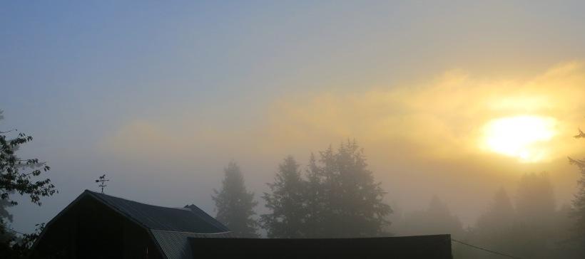 sunrise9281
