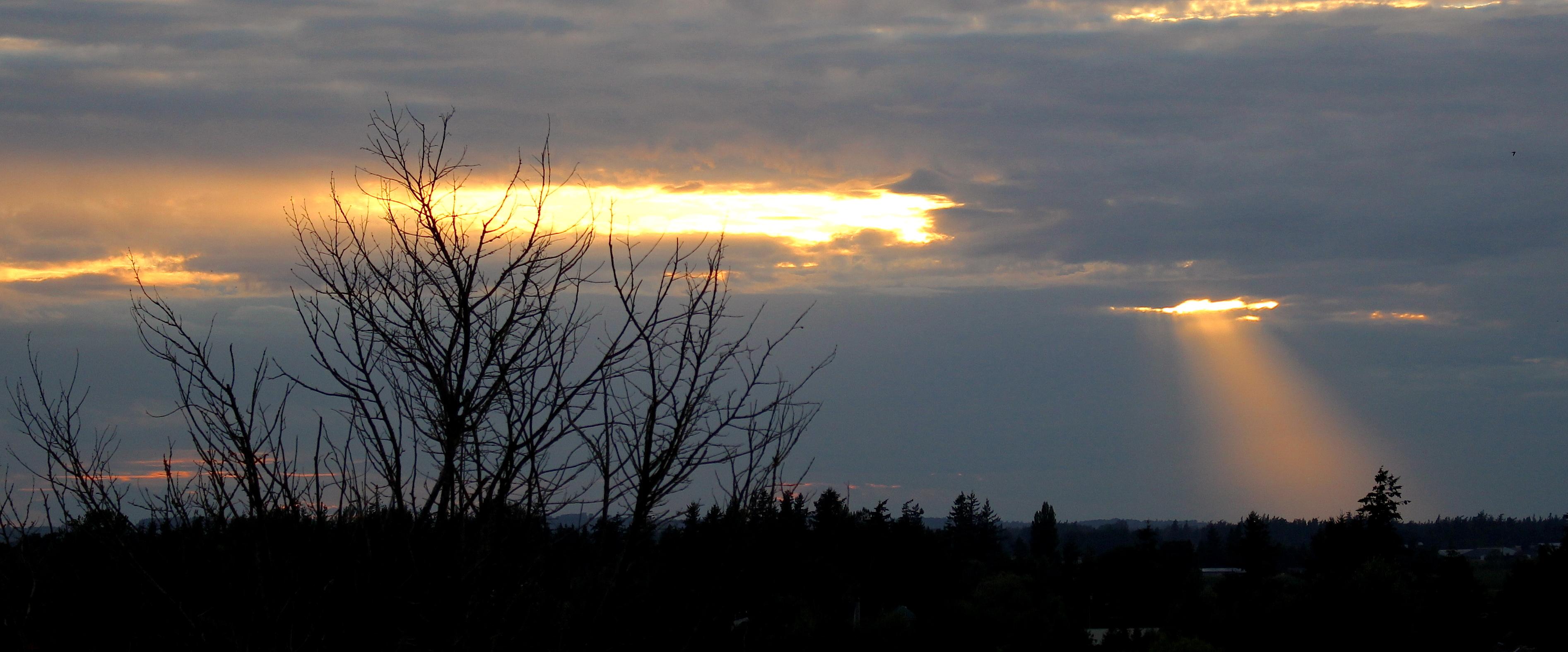 sunset831145