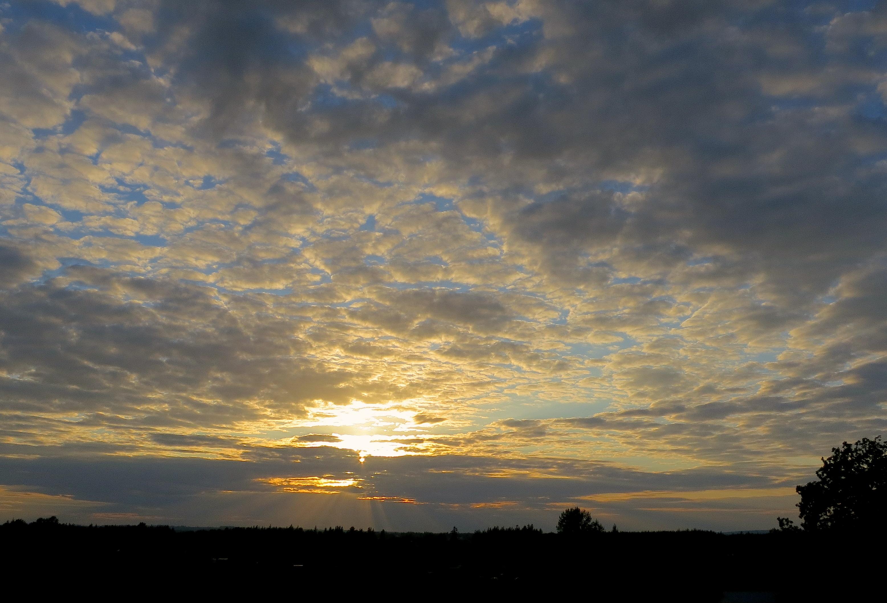 sunset831149