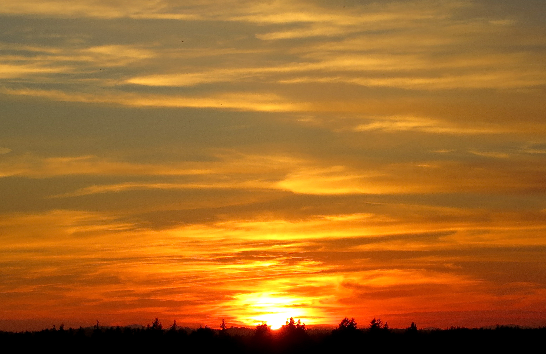 sunset912142
