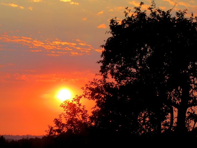 sunset921141