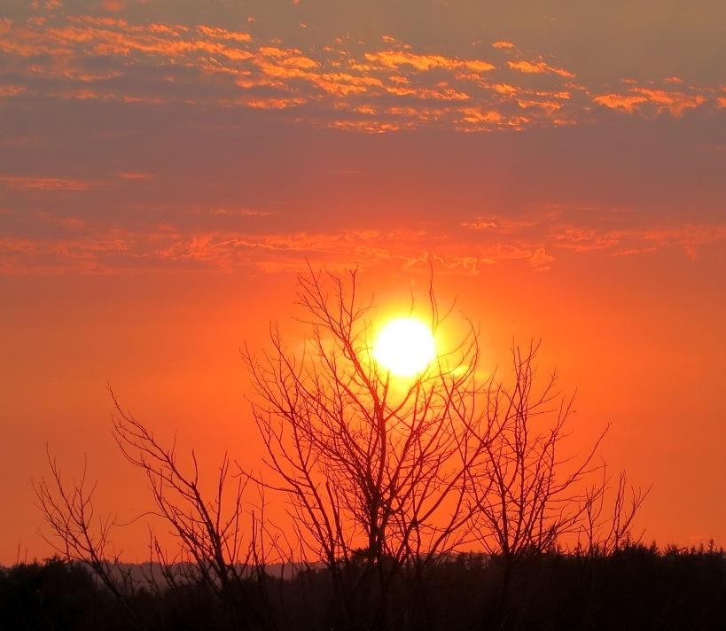 sunset921145