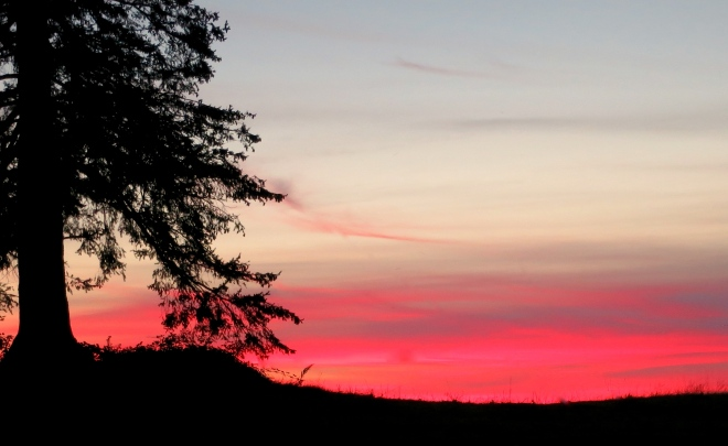 sunset97142