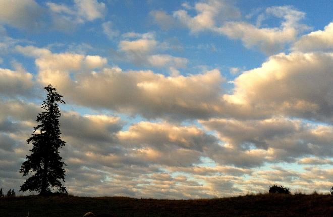clouds10114