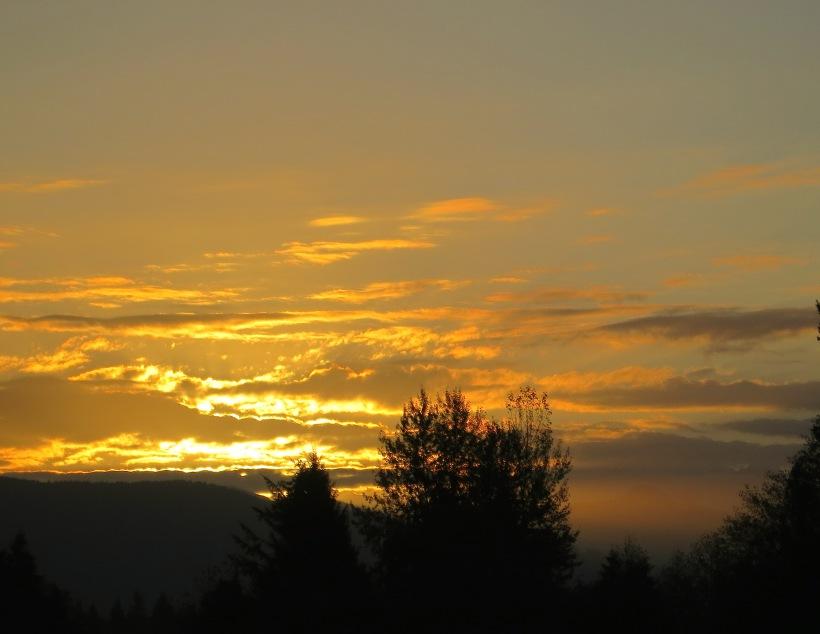 sunrise102142