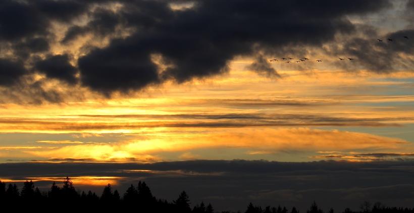 sunset11221410