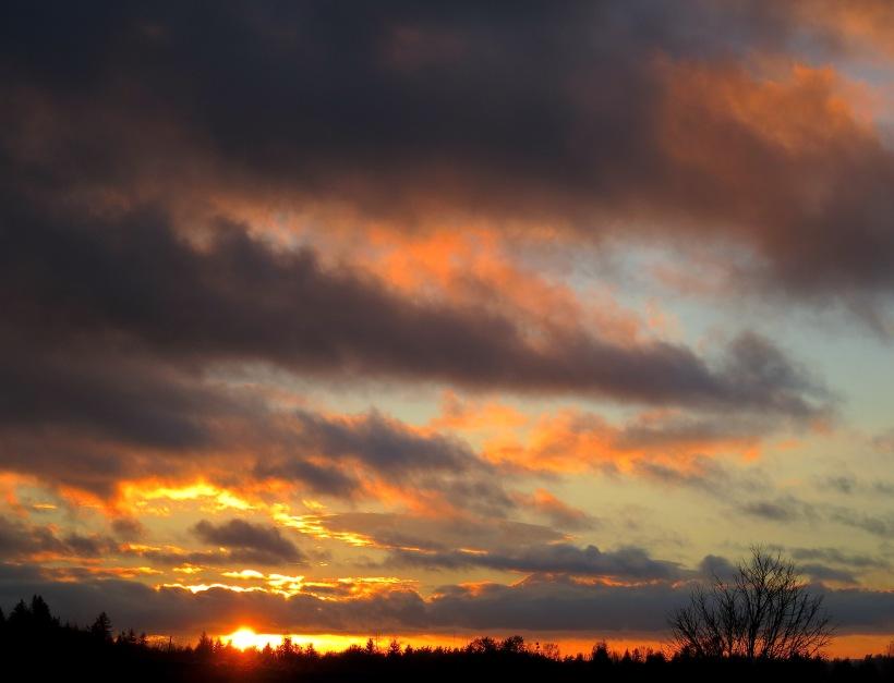 sunset11914