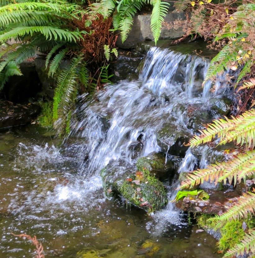 poliswaterfall2