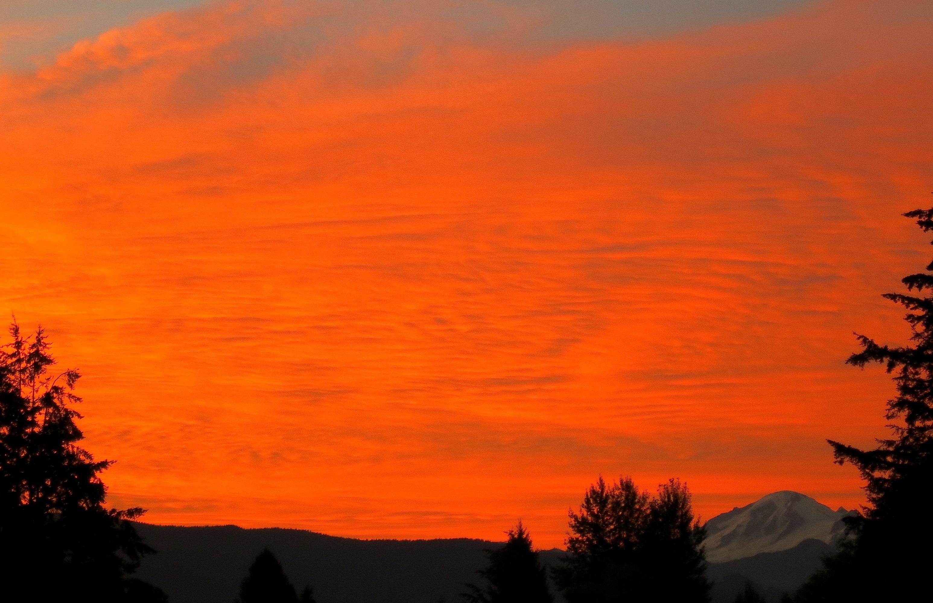 sunrise81144