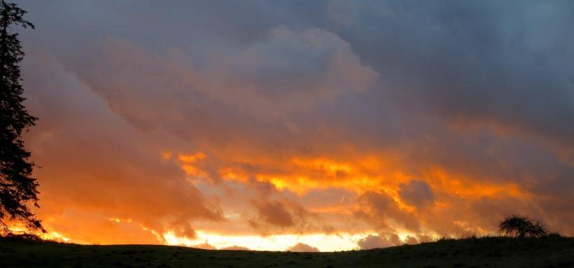 sunset1224146