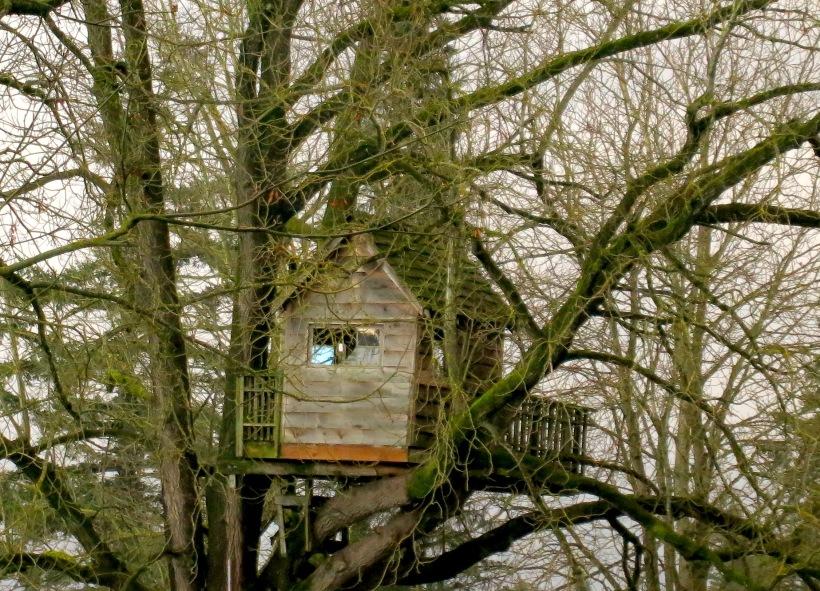 treehousenovember