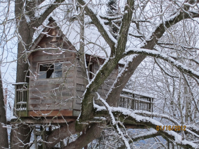 treehousewinter3