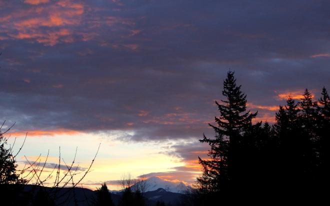 sunrise113151