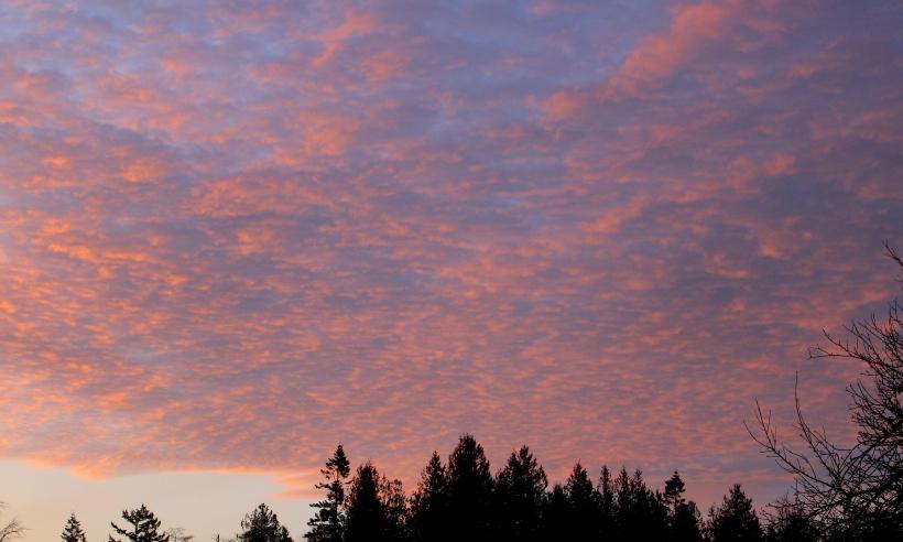 sunrise1221153