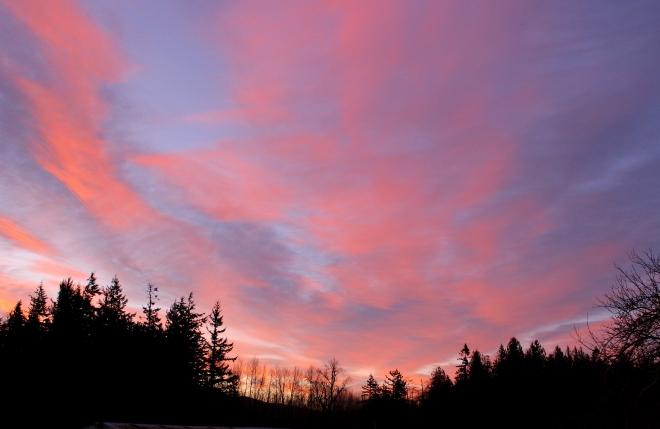 sunrise216155