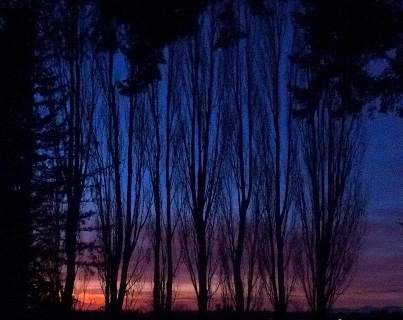 sunset21615iphone2