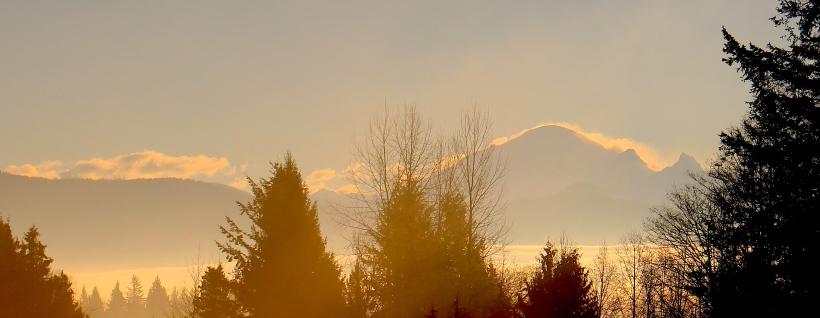 cloudsea