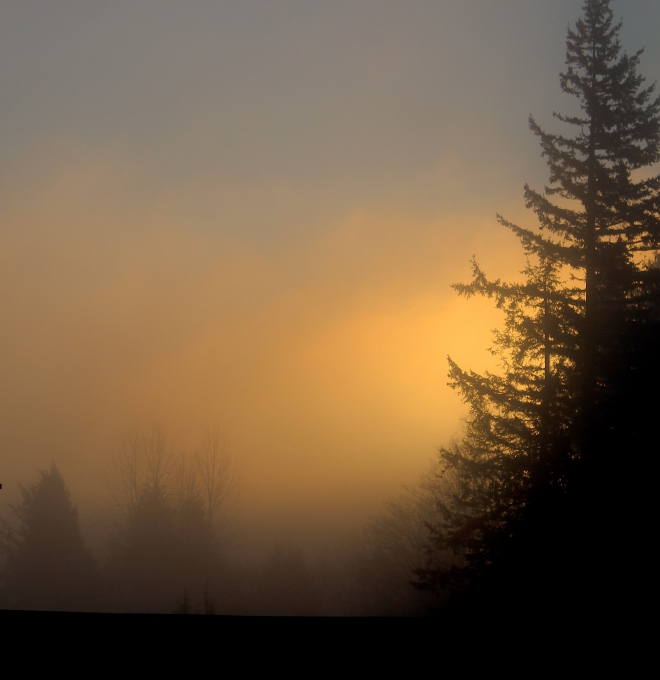 sunrise221151