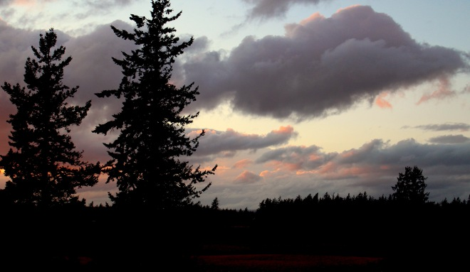 sunset423151