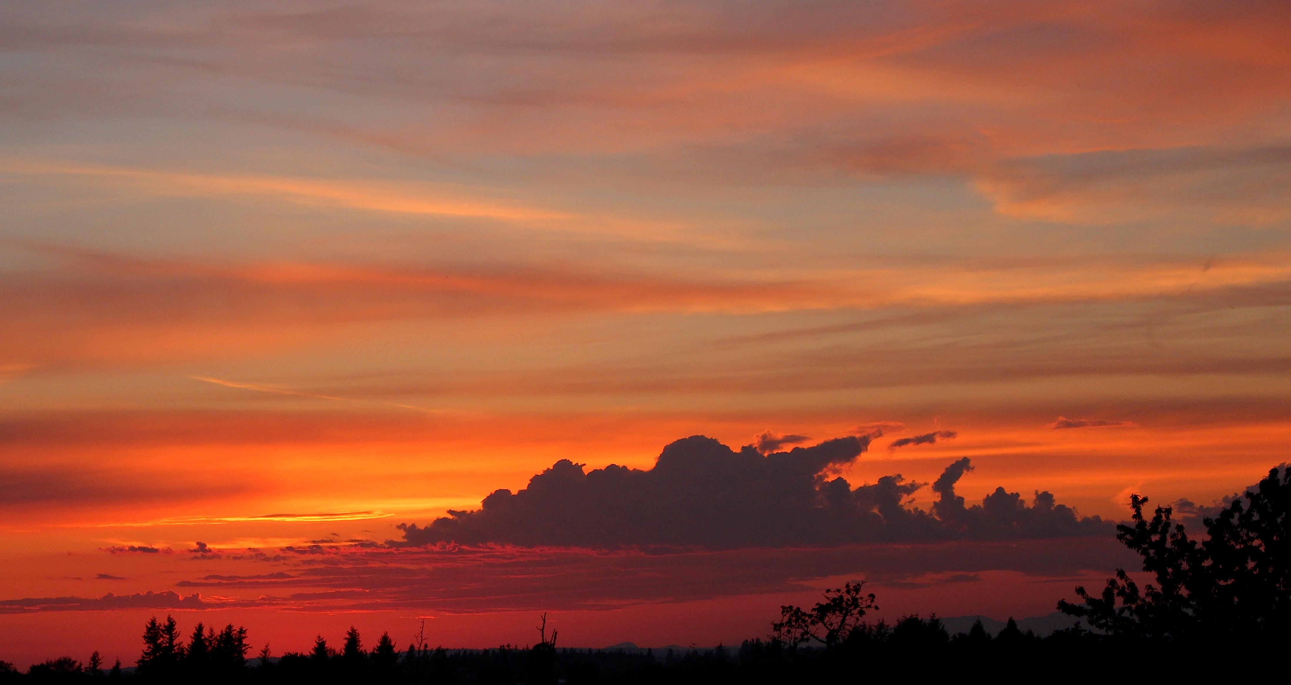 sunset521151