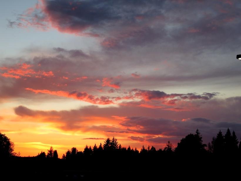 sunset5514