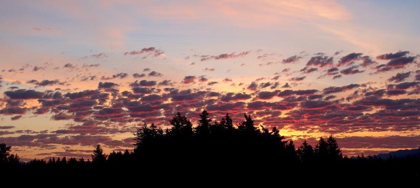 sunrise615153